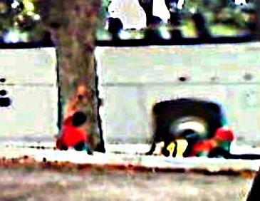 Apparitions troublantes sur une photo - Page 4 789cap10