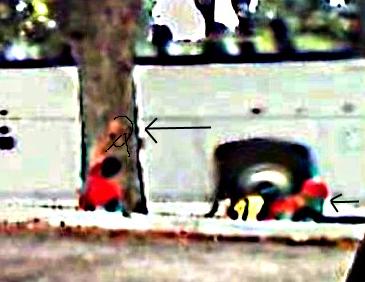 Apparitions troublantes sur une photo - Page 5 789cap11