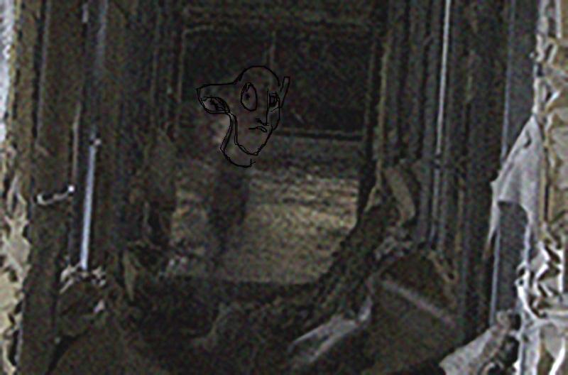 Forme étrange sur une photographie _dsc3211
