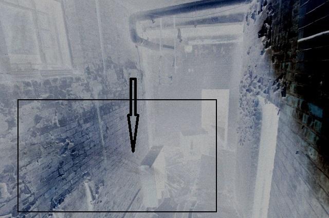 Forme étrange sur une photographie _dsc3212