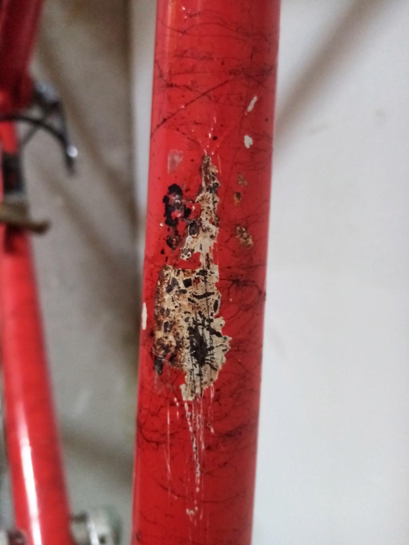 Aide identification vélo MERCIER Img_2027