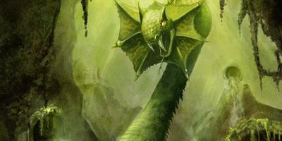 Les monstres et autres créatures rares Basili11