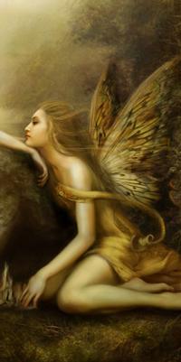 Les innombrables  fées   Fzoe-d10