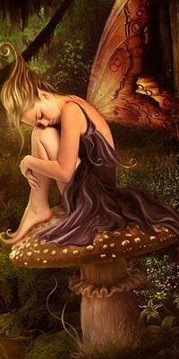 Les innombrables  fées   Introd13