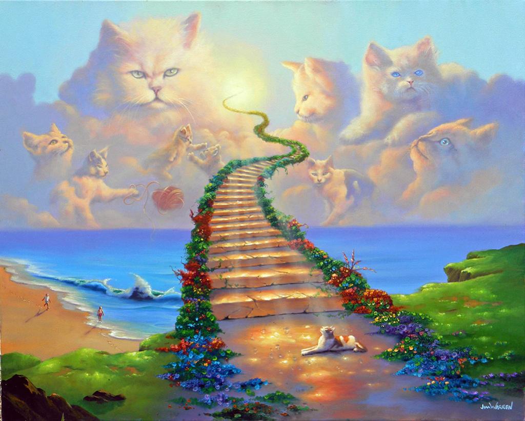 RIP kleine kitten Allcat10