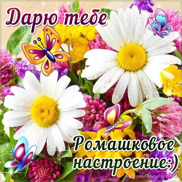 Наши праздники - Страница 10 D7276e11