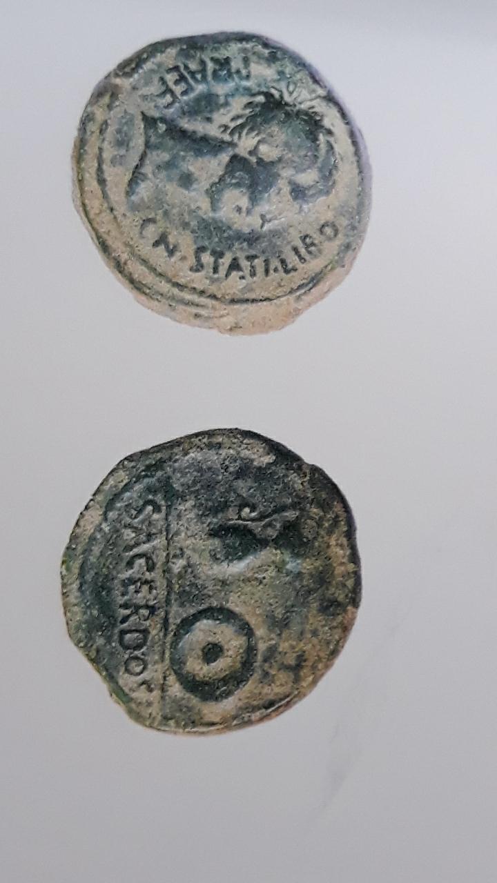 Semis tipo Sacerdos, s. I a.c. 2020-310