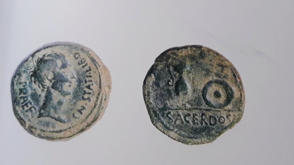 Semis tipo Sacerdos, s. I a.c. 2020-312