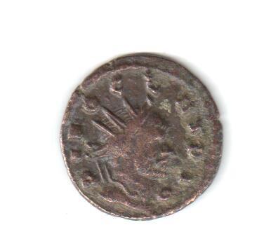 Híbrida de Claudio II y Quintilo ? Hibran10