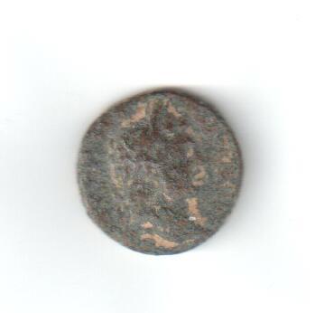 Provincial de Seleucis y Pieria para id, Domiciano? Scdomi10