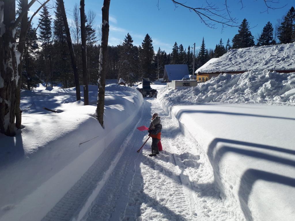 Beauté de neige et quantité 2019 20190214