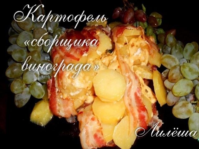 Картофель «сборщика винограда» 74410