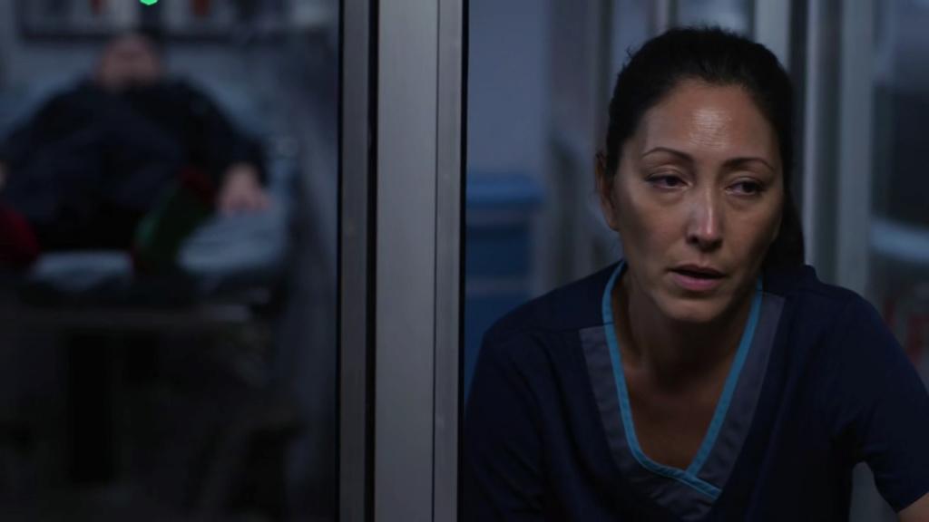 The Good Doctor | S01 18/18 | S02 18/18 | Lat-Ing | 720p | x265 Vlcsn104