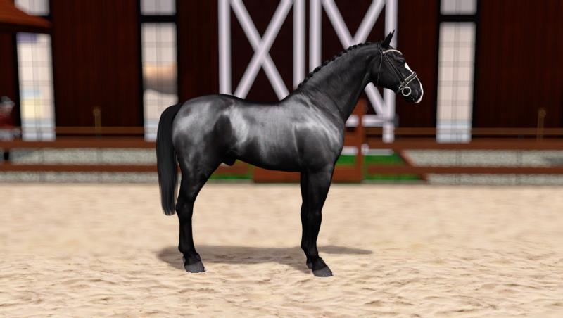 Регистрация лошадей в RHF 2 - Страница 8 Screen12
