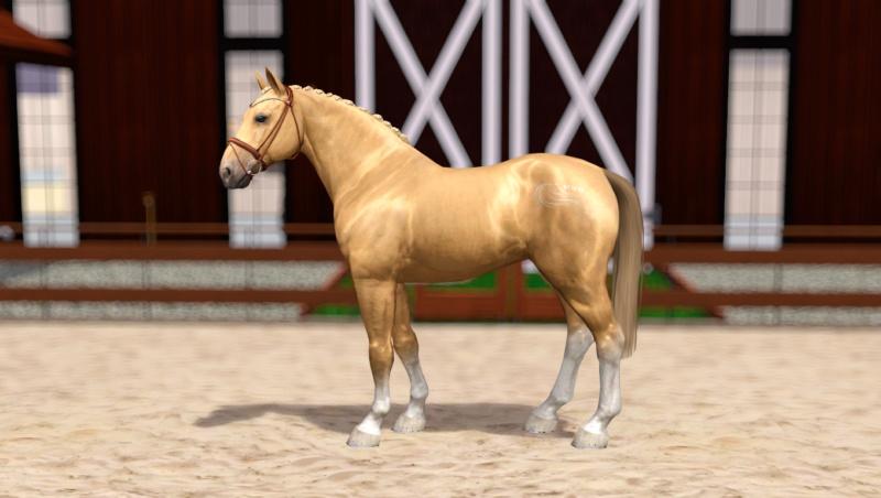 Регистрация лошадей в RHF 2 - Страница 8 Screen14