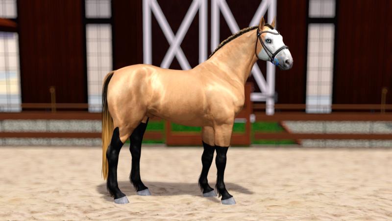 Регистрация лошадей в RHF 2 - Страница 8 Screen16