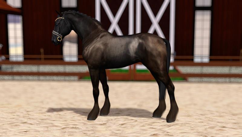 Регистрация лошадей в RHF 2 - Страница 8 Screen17