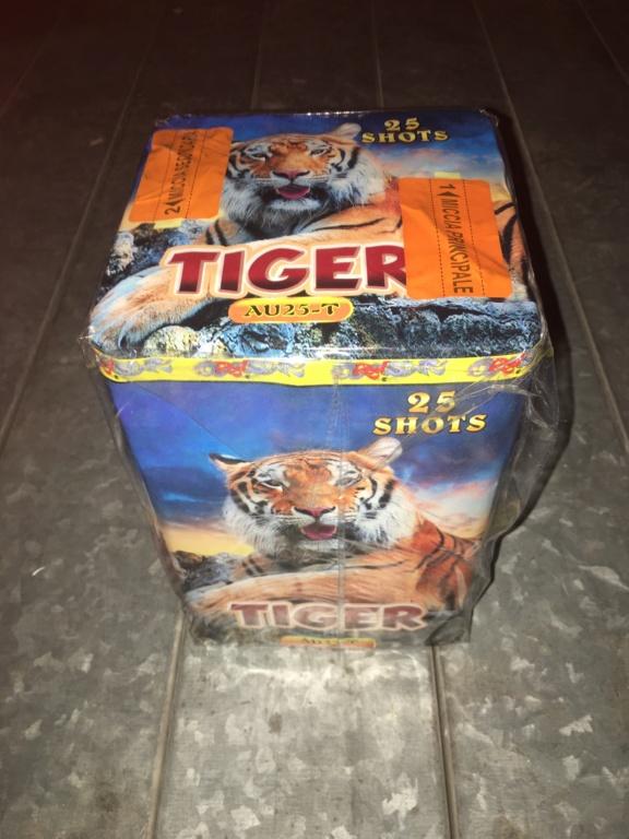 Tiger Img_9019