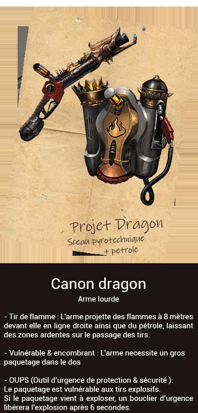 Rapport final de l'opération Warnum Dragon10