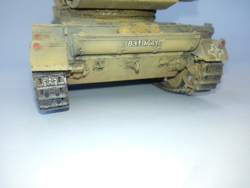 IDF AMX 13 75 Img_2472