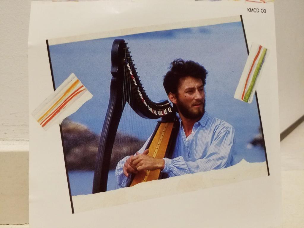 Harpe de Dominig Bouchaud? 20190210