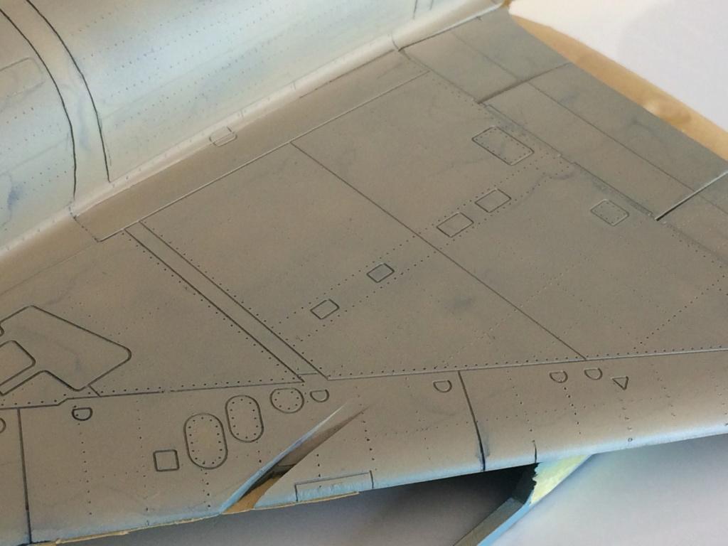 """Mirage IIIC """"Djibouti"""" Eduard 1/48 - Page 2 Img_2227"""