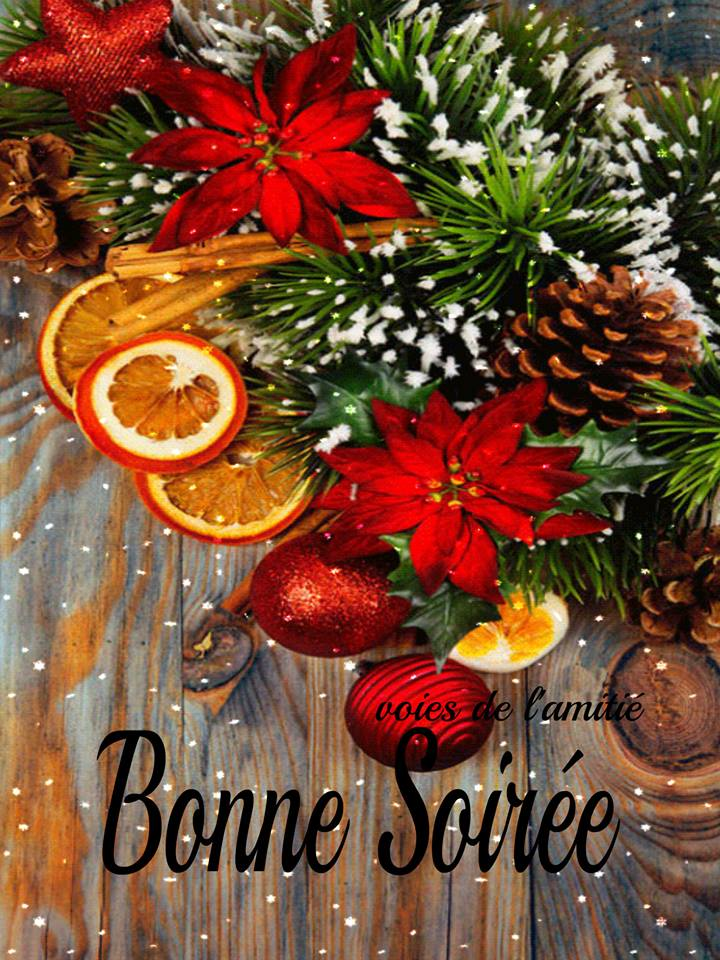 mercredi 2 janvier 2019 Bonne-16