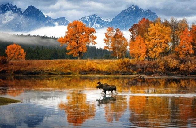 Belles images d'automne  Superb11