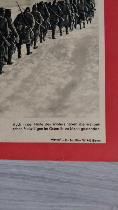 Waffen SS Leon Degrelle  A6c24310