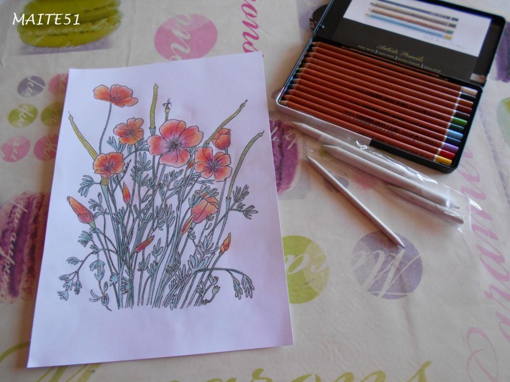 """Essai de dessin """"greysccale"""" et pastels secs... - Page 2 Fleurs10"""