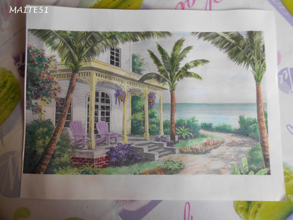 """Essai de dessin """"greysccale"""" et pastels secs... - Page 2 Villa_11"""