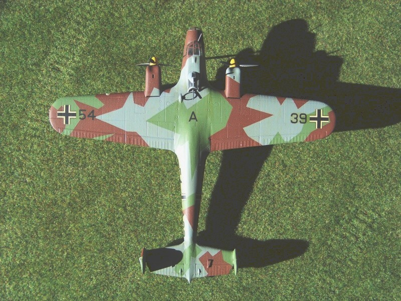 Henschel He123 A1 - Gaspatch 1/48 - Page 3 100_7110