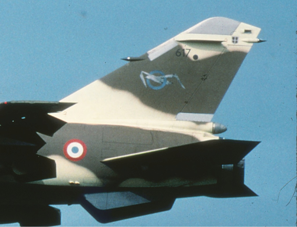 Mirage F1 CT/CR 1/48 Kittyhawk Dassau18