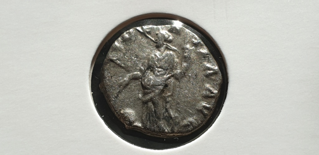 Denario de Septimio Severo. PROVIDENTIA AVG. Laodicea ad Mare 2019-015