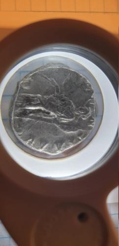 Denario de Septimio Severo. PROVIDENTIA AVG. Laodicea ad Mare 20190816