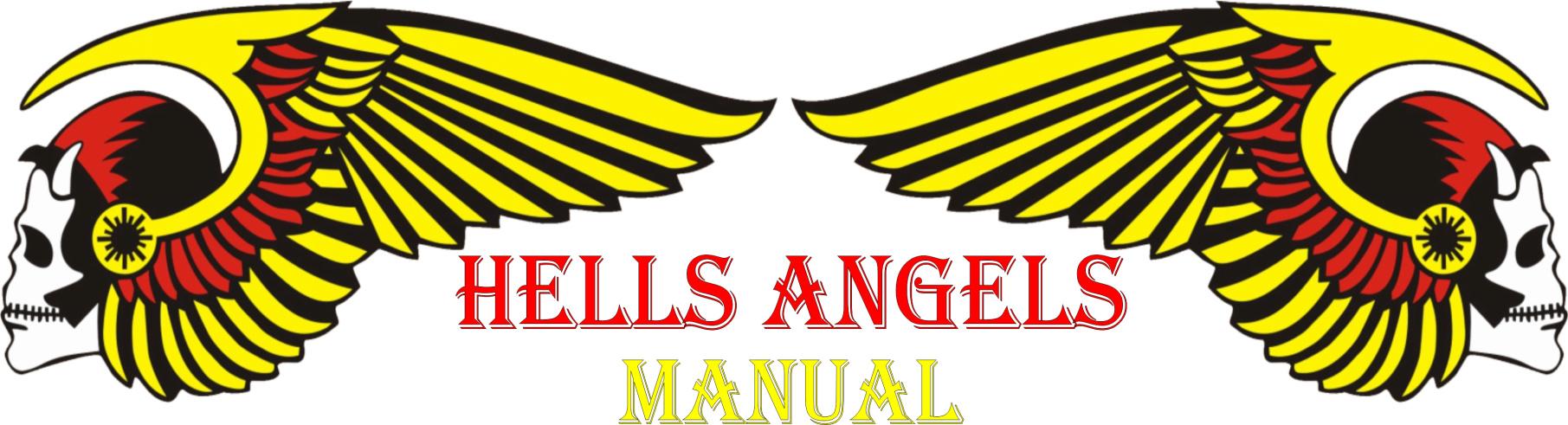 MANUAL Manual11
