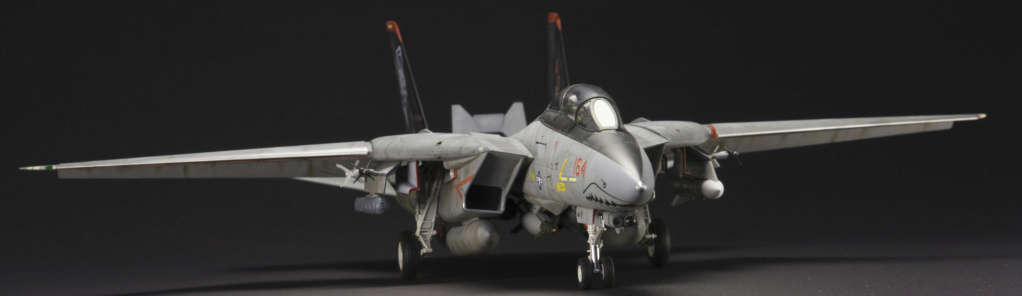 F-14 Tomcat 1/48 14d_hb19