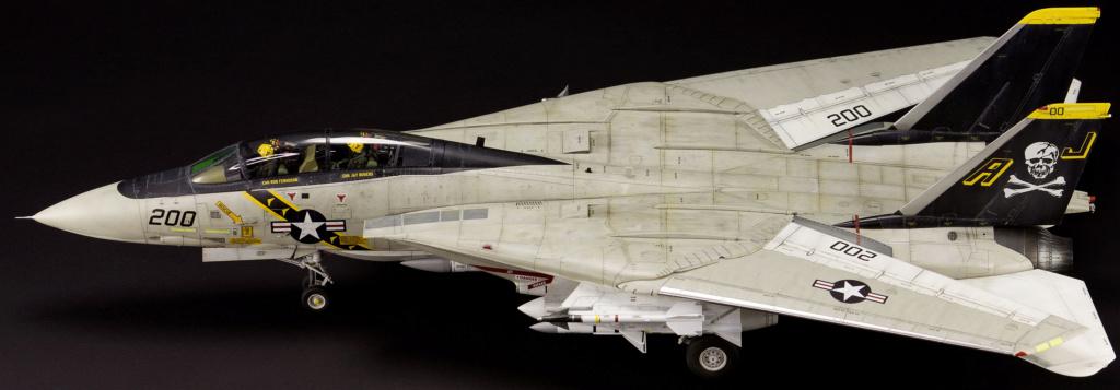 F-14 Tomcat 1/48 14ie_t12