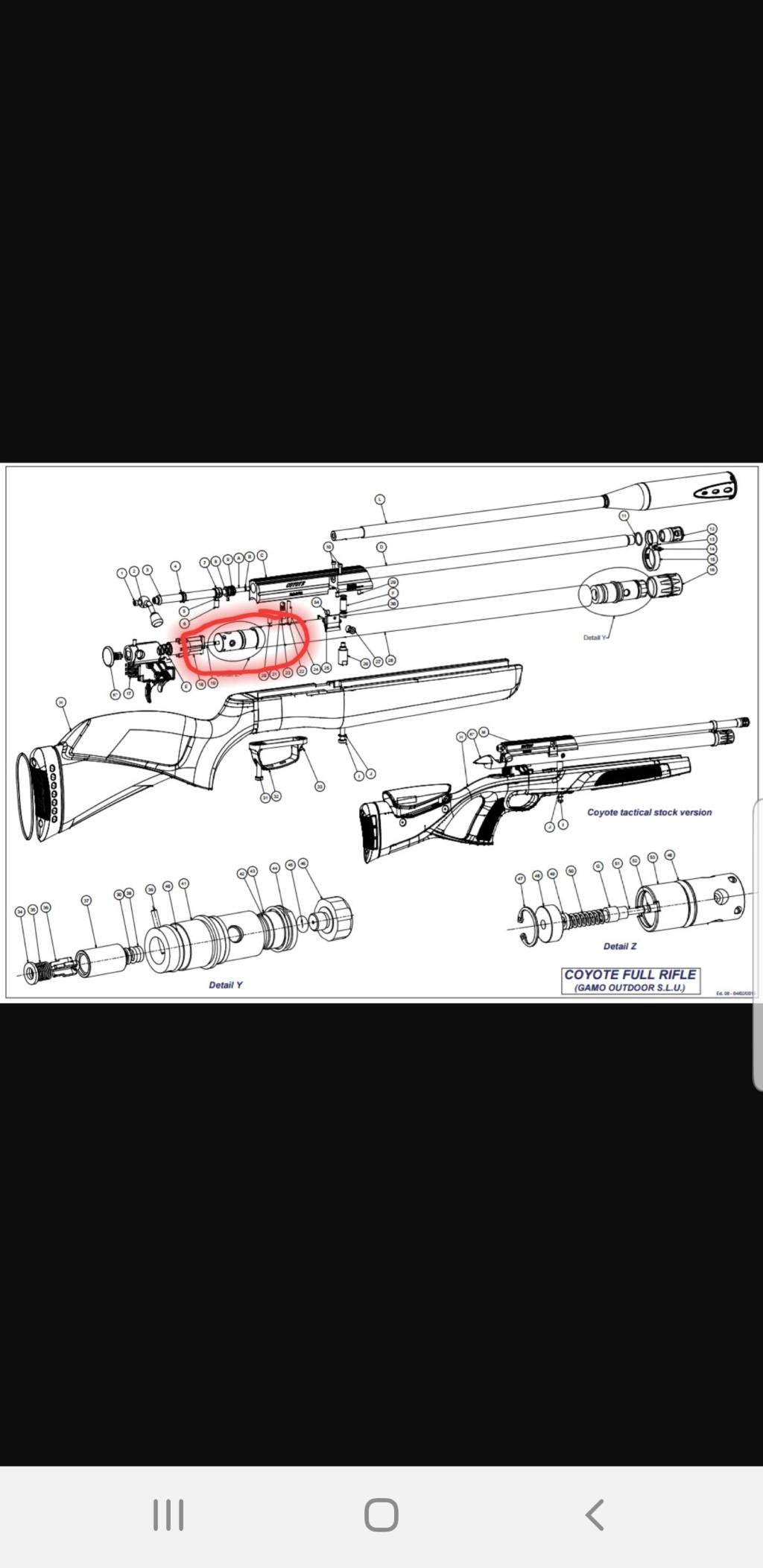 Conseil regulateur sur gamo coyote 5.5mm 40joules  20200110