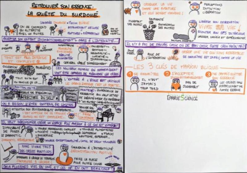 congrès en ligne Douance Sketch10