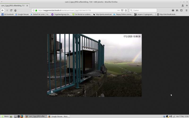 Afbeeldingen De Mortel 2020 deel 1. Vanaf 6-01-2020 - Pagina 24 Screen27