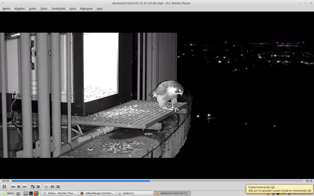 Afbeeldingen De Mortel 2020 deel 1 vanaf 1 maart 2020 - Pagina 10 Screen47