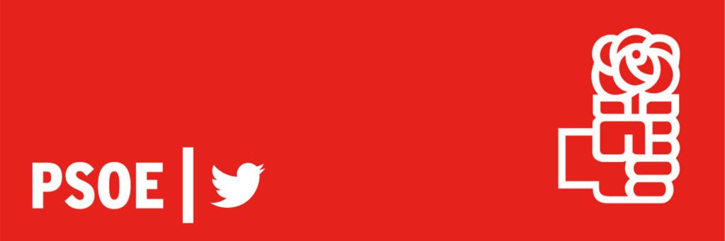 SOCIALISTAS EN TWITTER Disezo11
