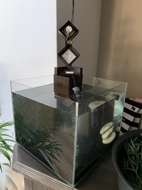 Remise en eau d'un aquarium - ou mets je cette molette ? Img_6210
