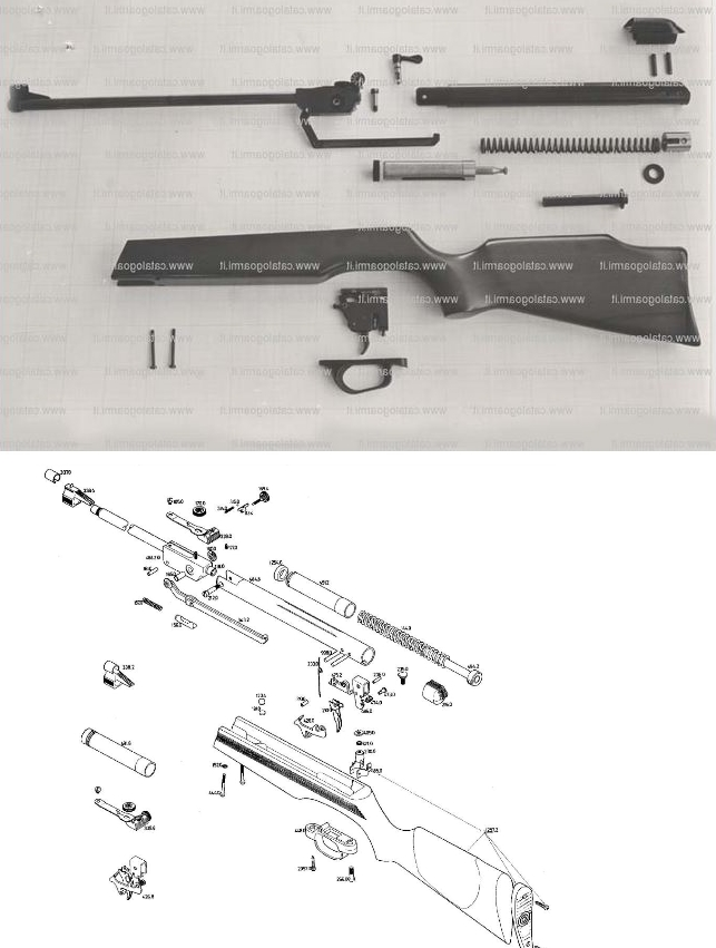 Recherche d'informations sur cette carabine 4.5 Compar10