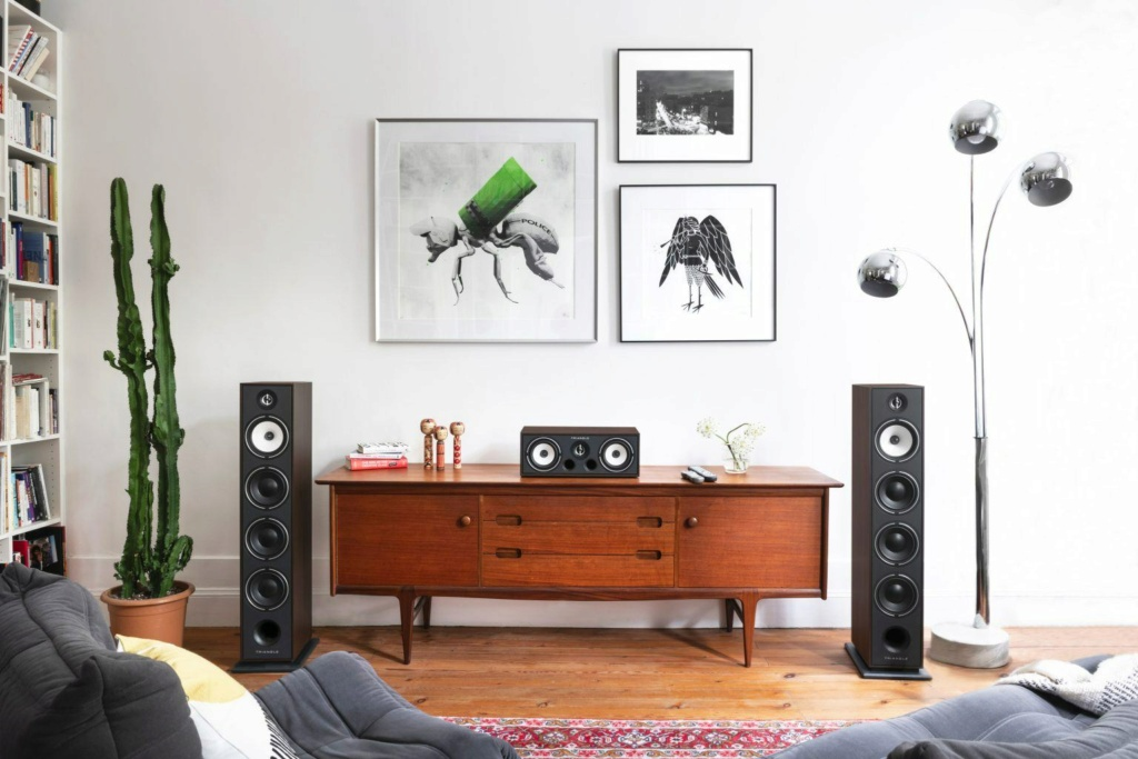 Triangle BRC-01 Center Channel Speaker Triang12