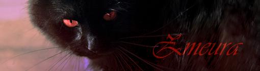 [Witch Hunt] Devourer of Souls  Zmeura10