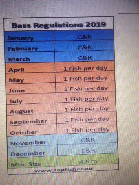 BASS Reg, 2019 Img_5910