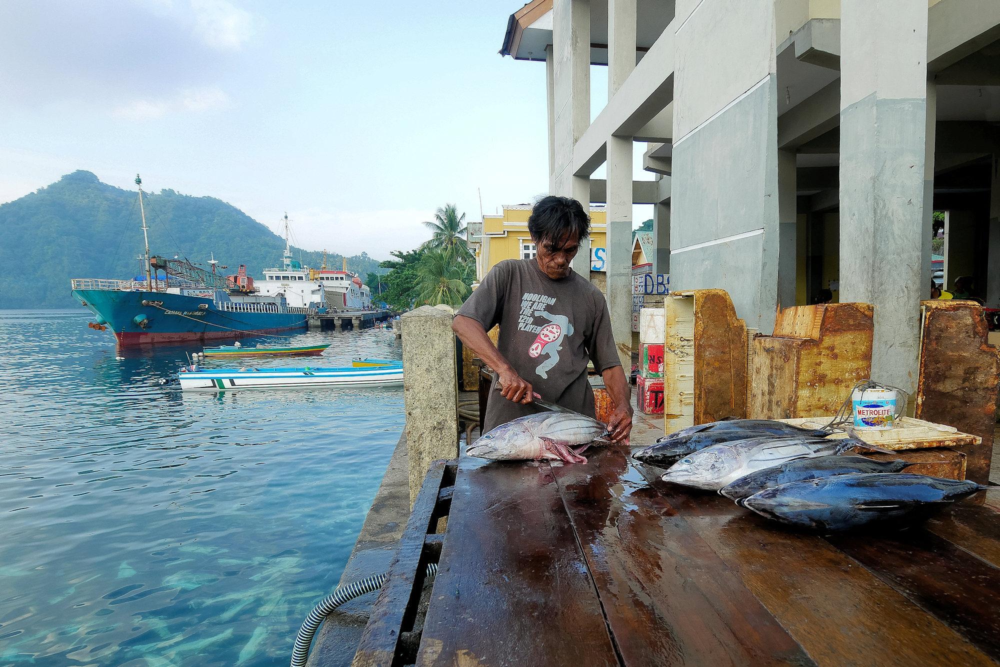 Retour de pêche P1090311