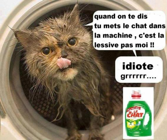 Topic Humour - Page 17 Aachat10